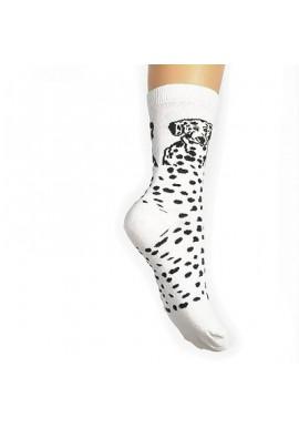 Lady dalmatin